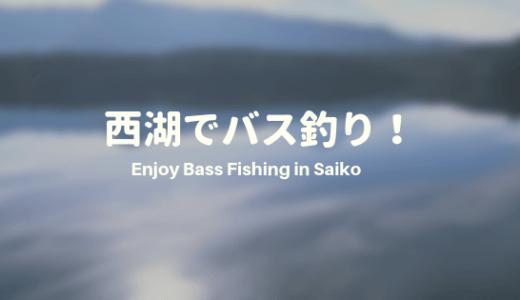 西湖でバス釣り!ポイントと釣り方を紹介します!