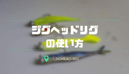 ジグヘッドリグの基本!おすすめワーム5選を紹介!